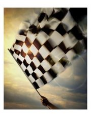 SuperStock_1236-143~Person-s-Hand-Waving-a-Checkered-Flag-Posters